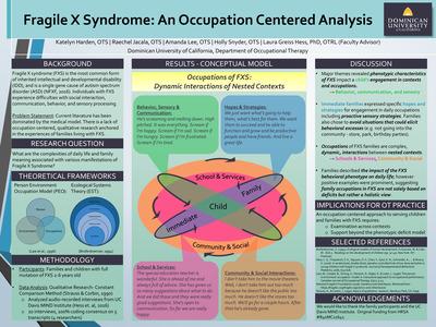 analysis of the fragile x syndrome