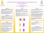 Peer Perceptions and Social Support for Young Adults on the Cancer Continuum
